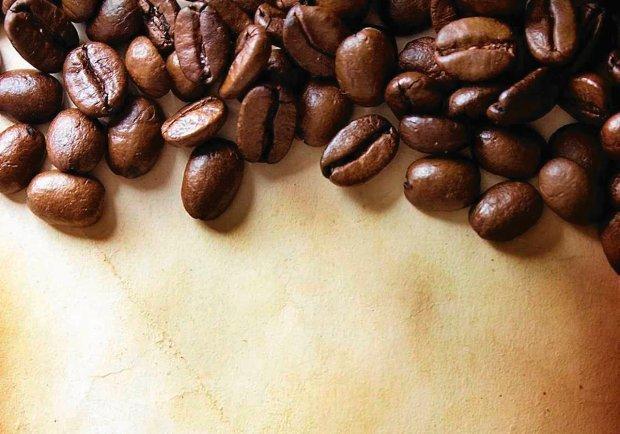 Trzy sposoby zbierania kawy