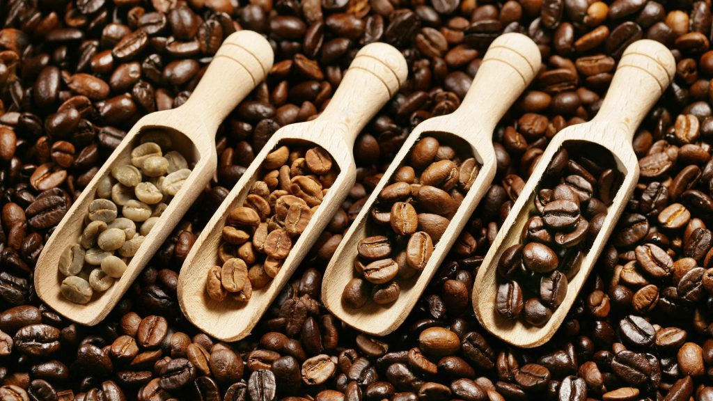 Dlaczego ziarenka kawy są tłuste?
